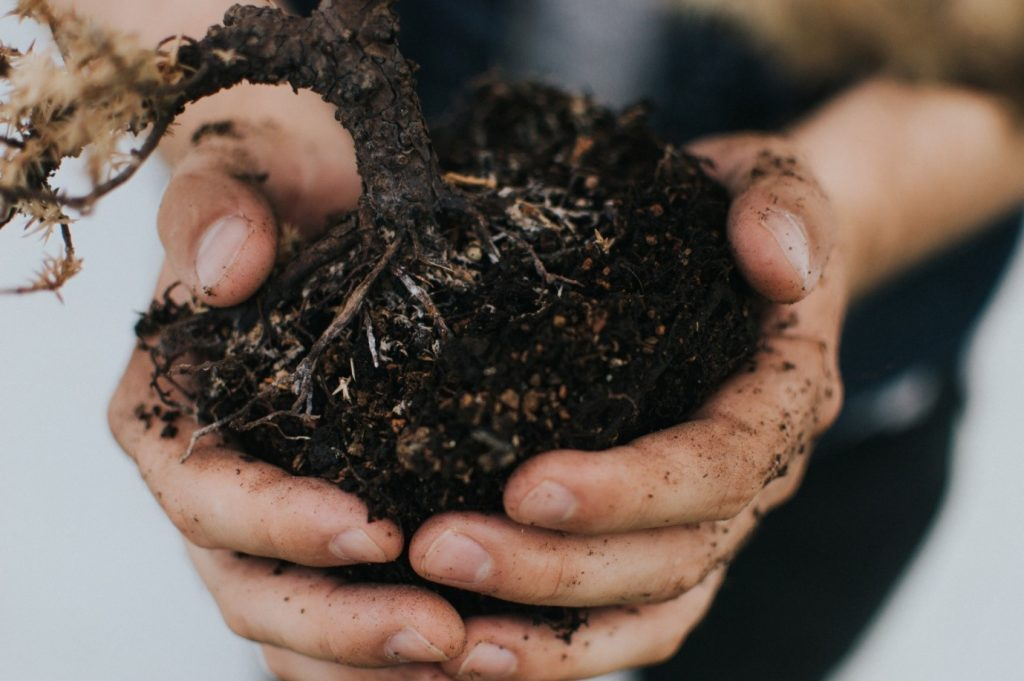 5 Simple Steps to Kickstart Aerobic Composting