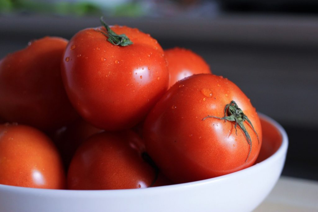 5 Top Tips to Grow Healthy Tomato Plants
